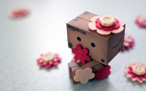 Picture flowers, box, buttons, Danbo, amazon, boxes