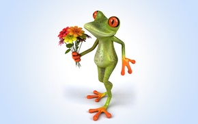 Picture flowers, frog, frog, funny
