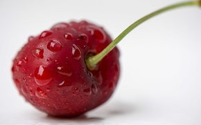 Picture berry, red, ripe