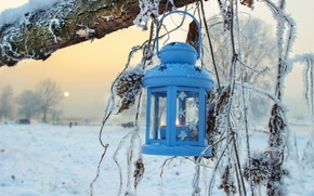 Picture winter, snow, trees, nature, lantern
