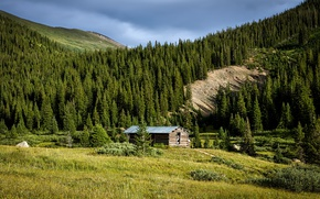 Picture greens, forest, summer, the sun, trees, mountains, glade, the barn, Colorado, USA