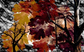 Picture leaves, nature, color