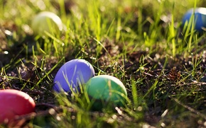 Picture greens, grass, eggs, spring, Easter, grass, colorful, spring, Easter, eggs, colored