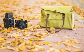 Wallpaper vintage, autum, road, bag, photography, fashion