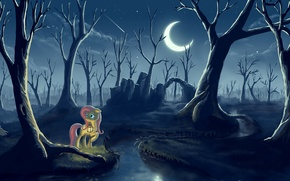 Picture forest, night, the moon, lantern, pony, My little pony