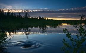 Wallpaper Eddy and The Beaver, lake, sunset
