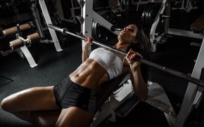 Picture face, hair, figure, Valentina, Grif, rod, press, Fitness, the gym, exercise