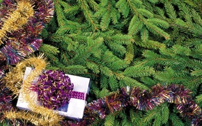 Picture holiday, gift, tree, new year, tinsel