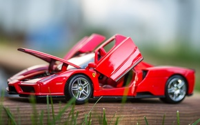 Picture macro, toy, machine, Ferrari Enzo, model