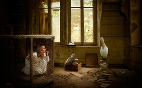 Picture girl, birds, fantasy, room, cell