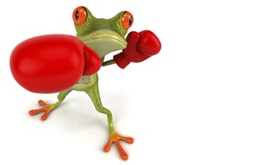 Picture graphics, frog, Boxing, gloves, Free frog 3d