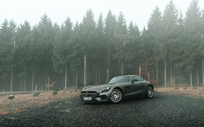 Picture Mercedes-Benz, Front, AMG, Grey, Supercars, Forest, GT S