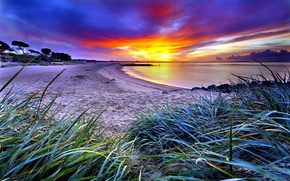 Picture SUNSET, GRASS, GREEN, HORIZON, CLOUDS, The SKY, SAND, BEACH, DAWN, COAST, SHORE