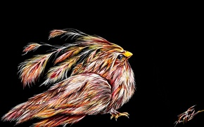 Picture fantasy, bird, sketch