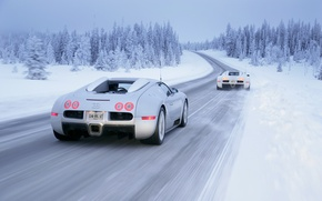 Picture winter, snow, Bugatti, Veyron, Winter, White, Drive