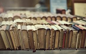 Picture macro, books, shelf