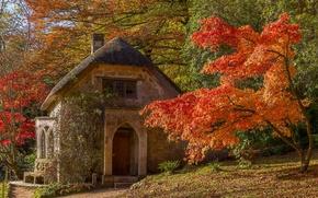 Wallpaper England, autumn, house, Wiltshire, Stourhead Garden, Wiltshire, trees, England, maple, Stored, Park