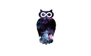 Wallpaper owl, bird, space