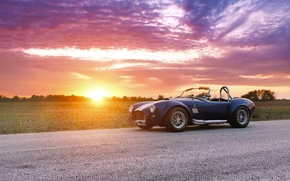 Picture car, ford, shelby, cobra