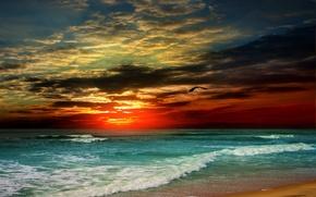 Picture sand, sea, beach, sunset, shore, beach, sea, sunset, sand, shore, paradise, tropical