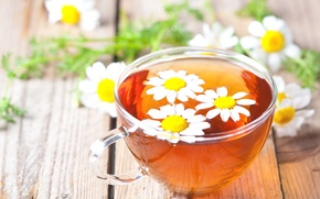 Picture glass, table, tea, Daisy, Cup