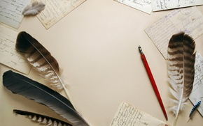 Picture paper, feathers, vintage, vintage, letters