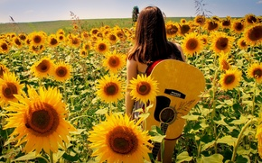 Picture summer, girl, sunflowers, nature, music, guitar