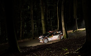 Picture Ford, Night, WRC, Rally, Rally, Fiesta, Robert Kubica