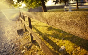 Picture summer, grass, the sun, light, trees, nature, stones, Board, the fence, fence