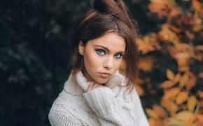 Picture autumn, look, face, mood, portrait, sweater