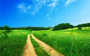 Wallpaper summer, road, grass, nature