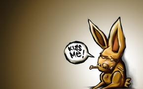 Picture Wallpaper, hare, kiss, terrible, kiss mi