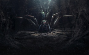 Wallpaper the darkness, spider, web, art, spider