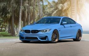 Picture BMW, Blue, Wheels, Strasse