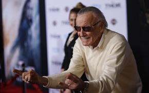 Picture fun, Stan Lee, Spider Man