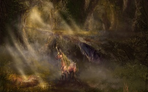 Wallpaper unicorn, horse, thicket, light, art, fantasy, forest