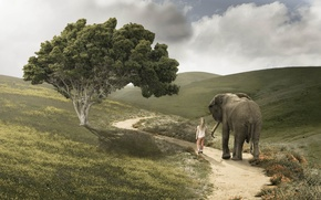 Picture road, elephant, girl