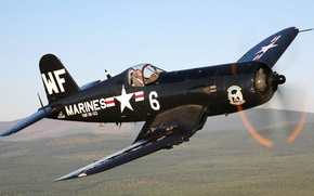 Picture forest, the sky, fighter, pilot, aircraft, corsair, deck, f4u