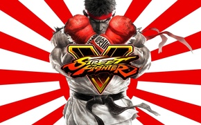 Picture cinema, game, fighter, japan, anime, man, cartoon, movie, asian, film, Street Fighter, Ryu, japanese, chest, …