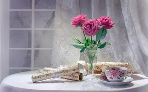 Picture flowers, notes, roses, window, Cup, still life