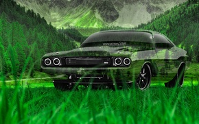 Picture Nature, Auto, Design, Mountains, Grass, Machine, Challenger, Dodge, Wallpaper, Muscle, Dodge, Muscle, Challenger, Car, Nature, …