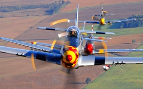 Picture group, flight, P-51 Mustangs
