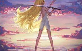 Picture the sky, girl, clouds, sunset, weapons, katana, anime, petals, art, bakemonogatari, oshino shinobu, history of …