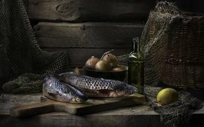 Picture lemon, oil, fish, bow