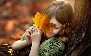 Wallpaper autumn, sheet, tree, girl