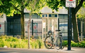 Picture the city, street, life, photo, street, bikes, montreal, bikes, pavement, quebec
