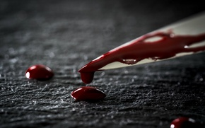 Picture macro, blood, knife