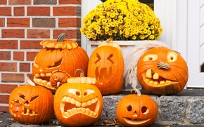 Wallpaper pumpkin, Halloween, Halloween, holiday, gang