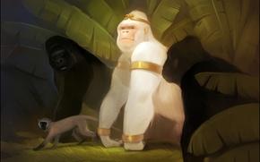 Picture forest, jungle, monkey, gorilla, art, albino, white king