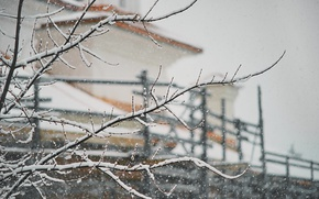 Picture house, winter, branches, snowing